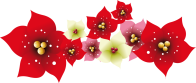 Natal_flores1